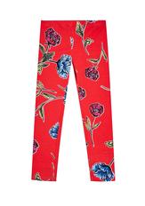 Fab Red Floral Legging