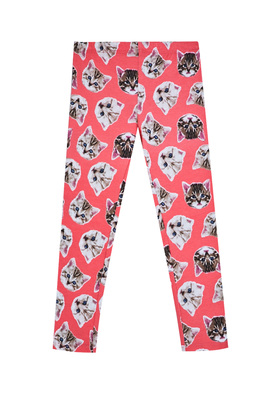 Fab Floral Animal Print Legging