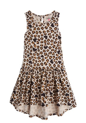 Leopard Drop-Waist Dress