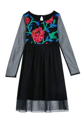 Floral Mesh Embroidered Dress