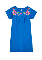 Embroidered Print Dress