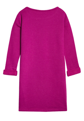 Owl Sweatshirt Dress