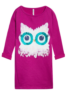 Owl Sweatshirt Dress