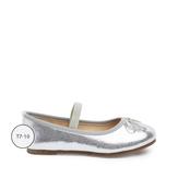 Silver Metallic Flat