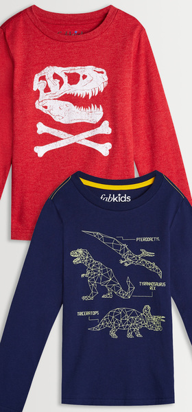 Dino Graphic Tee Pack