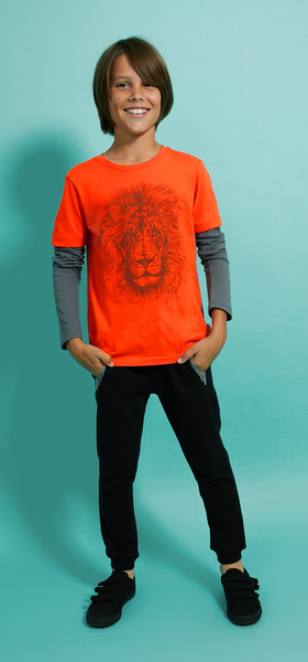 Lion Outfit