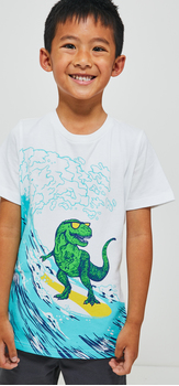 Surfing T-Rex Short Outfit