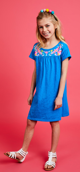 The Embroidered Print Dress Outfit