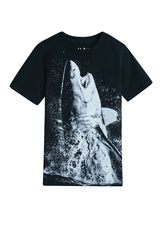 Shark Splash Tee