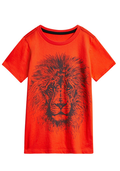 Lion Face Tee