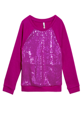 Sequin Crew Neck Sweatshirt